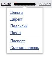 Yandex Паспорт